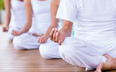 Meditation Foundation Program